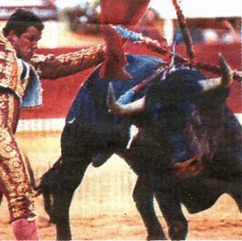 http://www.ephphata.net/images/corrida20.JPG